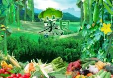 蔬菜水果大集合2图片