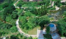 园林绿化俯视图片