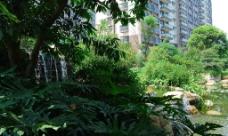 小区景观绿化图片