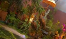 水池 鶴 花图片