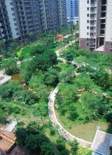 园林美景图片