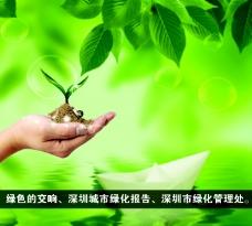 绿色的交响图片
