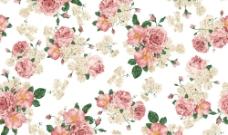 花紋花朵此圖1層圖片