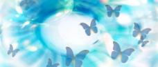 蝴蝶 PSD分层底纹图片