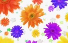 美丽的鲜花底纹图片
