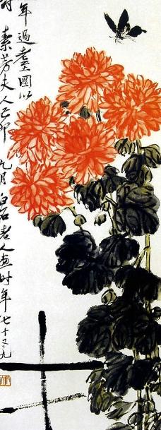 传世名画蝴蝶菊花图片