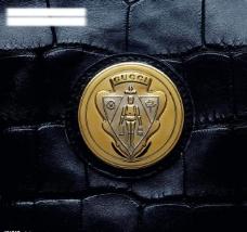 gucci 皮包上的logo图片