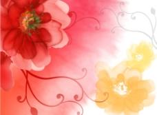 艳丽花纹图片