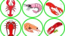 幾中形態的蝦圖片