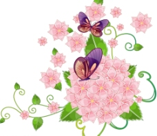 蝴蝶四叶花图片