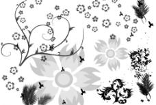 漂亮的植物及花朵笔刷
