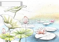 HanMaker韩国设计素材库 背景 淡彩 色调 意境 荷花 荷叶 绘画 风格