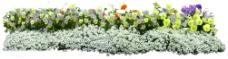 花丛16图片