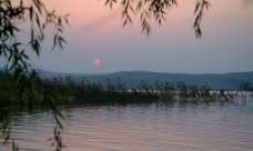 长春湖图片