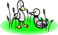 鸟类漫画0562