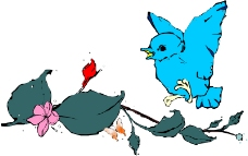 鸟类漫画0601