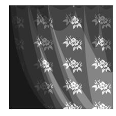 花纹白纱布图片