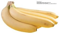 水果0020
