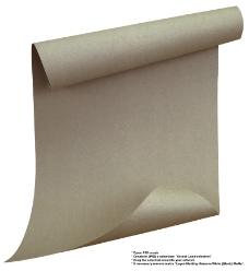 纸0006