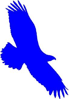 鸟类动物1390