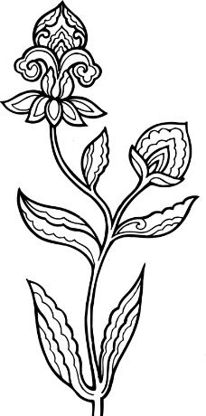 百合花康乃馨花朵