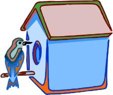 鳥類動物0645
