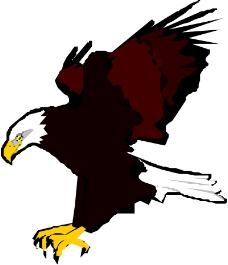 鸟类动物0530