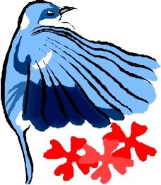 鸟类动物0549