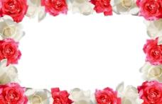 玫瑰花边图片