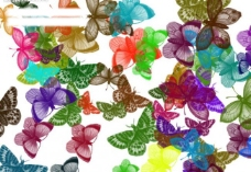彩色蝴蝶笔刷图片