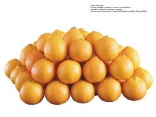水果0064